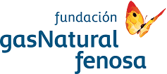 fundacion gas natural fenosa